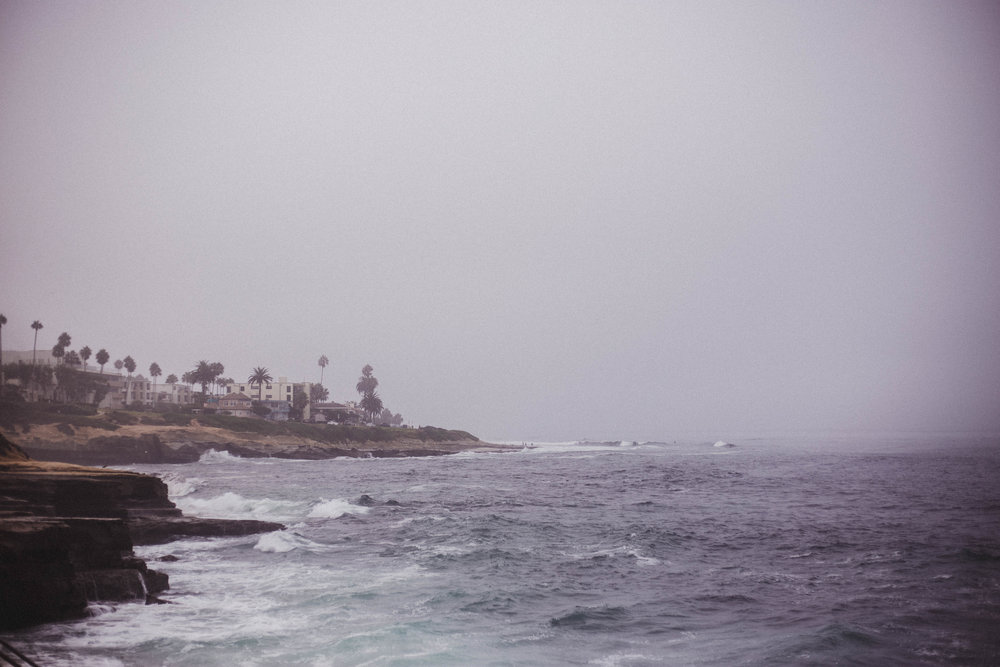 View from La Jolla Cove (San Diego City Guide)