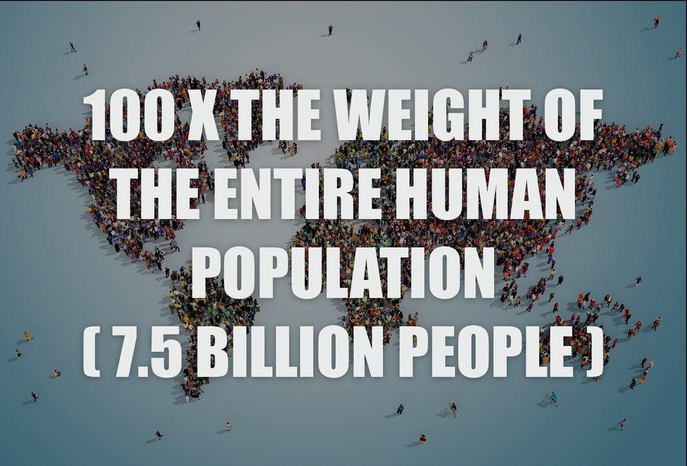 human population.jpg