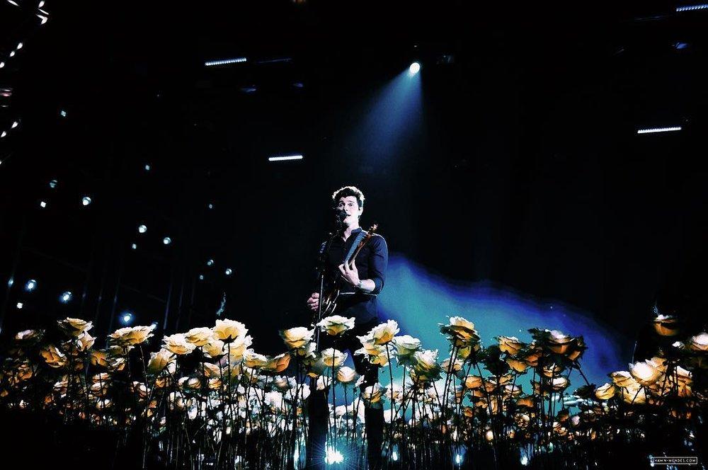 Billboard 2018 - Shawn Mendes - flower deck.jpg