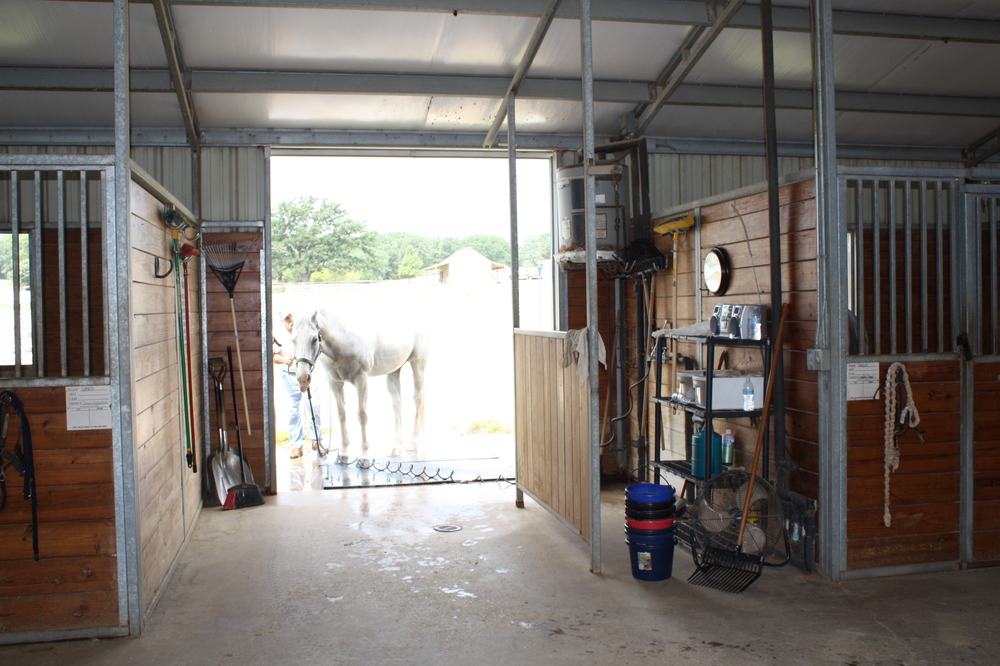 Saddlebrook Equestrian Center - Grooming Stall