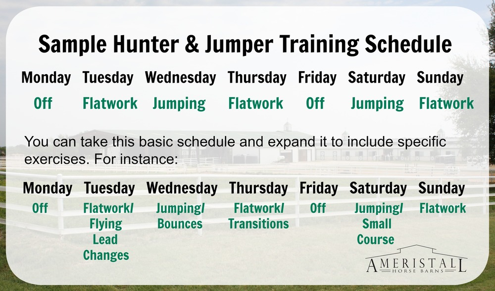 ameristall horse barns planning your horse s training schedule
