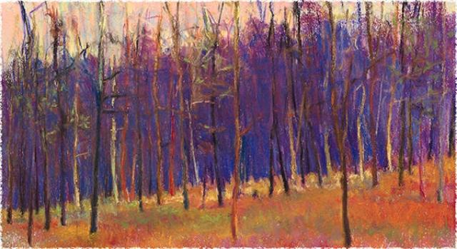 Winter Wood Giclee