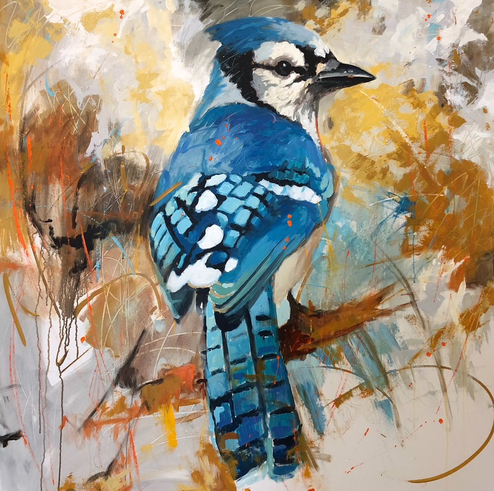 BlueJay 48x48 STRETCHED CANVAS.jpeg