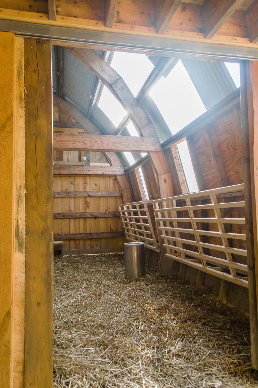 Piedmont Farm Animal Refuge — Bit & Grain