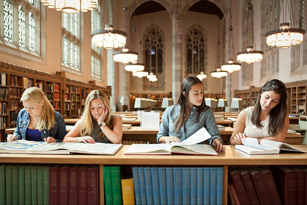 library_5333_cr.jpg