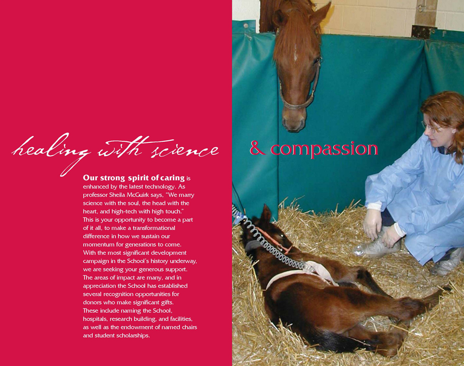 Theme and capital campaign materials that successfully helped raise funds for building new facility for University of Wisconsin School of Veterinary Medicine.