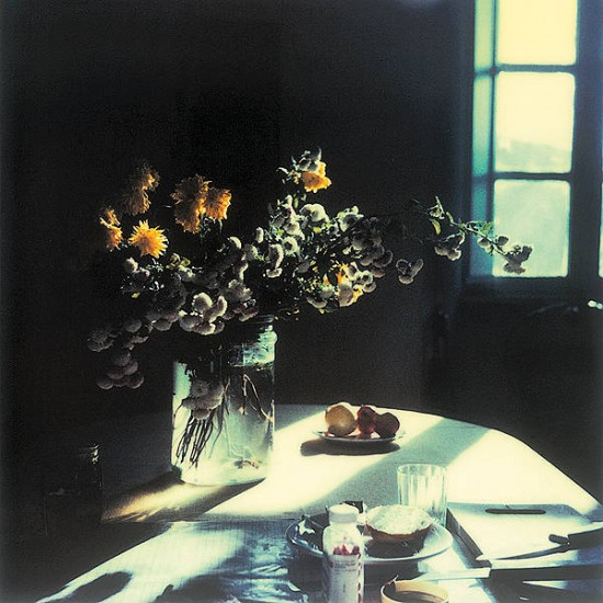 Polaroid by Andrei Tarkovsky from the book Instant Light: Tarkovsky Polaroids from Thames and Hudson. Discovered  here  thanks to  ayjay .