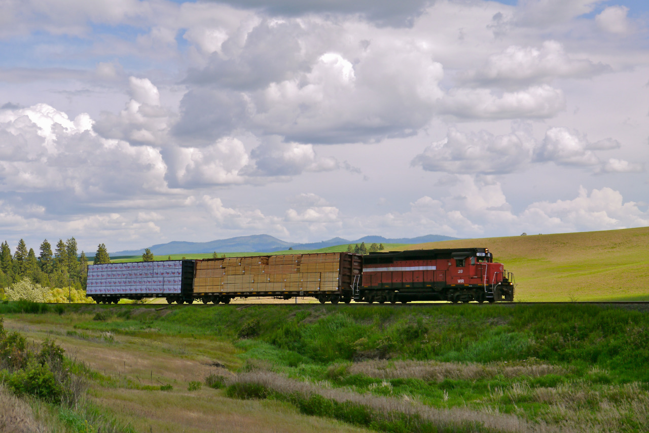 Northbound W&I Railway freight about halfway between Palouse and Garfield, Whitman County, WA. June, 2013.