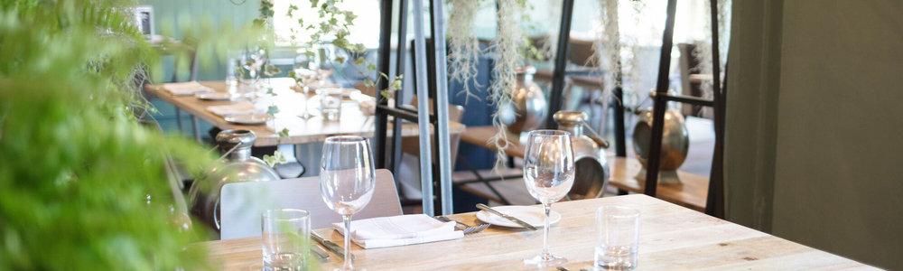 Restaurant-plant-hangers.jpg