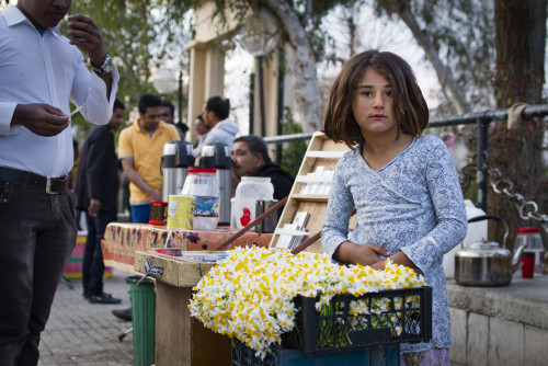 Syrian refugees sell tobacco, tea and, now that it's spring, flowers at Baghi Gashti on Fridays.
