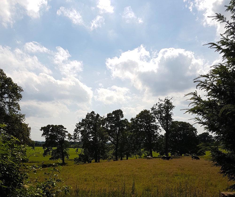 A Carlisle summer.