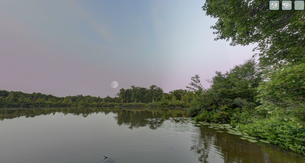 View an interactive 360 degree spherical panorama of a scenic view from a dock overlooking a Michigan forest and bustling aquatic life.