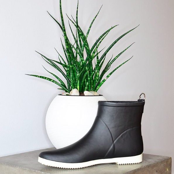 Alice + Whittles ethical boots