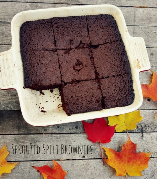 Sprouted Spelt Brownies
