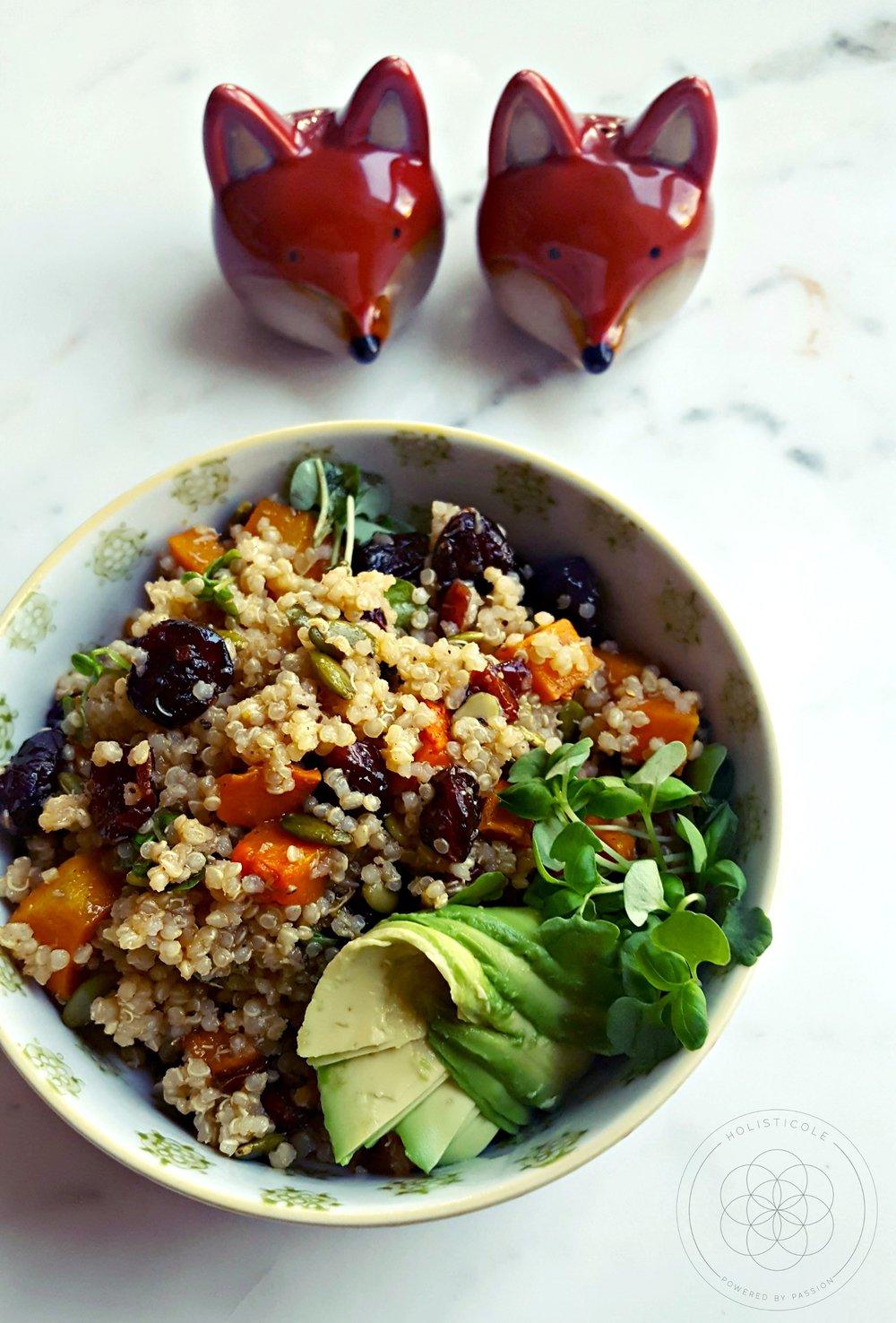 Quinoa Cranberry & Butternut Squash Salad - Holisticole