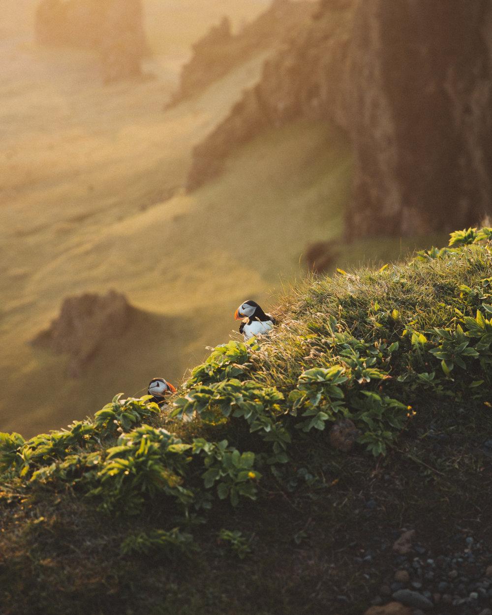 Iceland Day 3 - 49.jpg