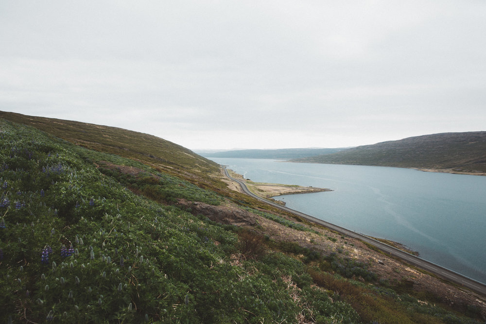 Iceland Day 6 - 11.jpg