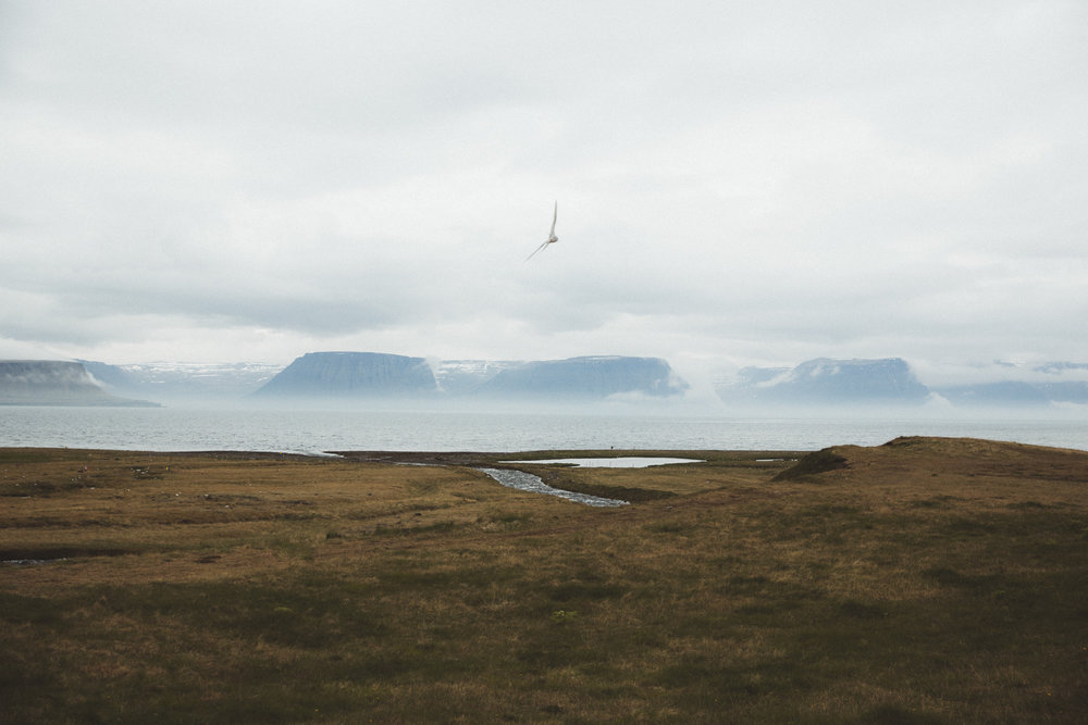 Iceland Day 7 - 06.jpg