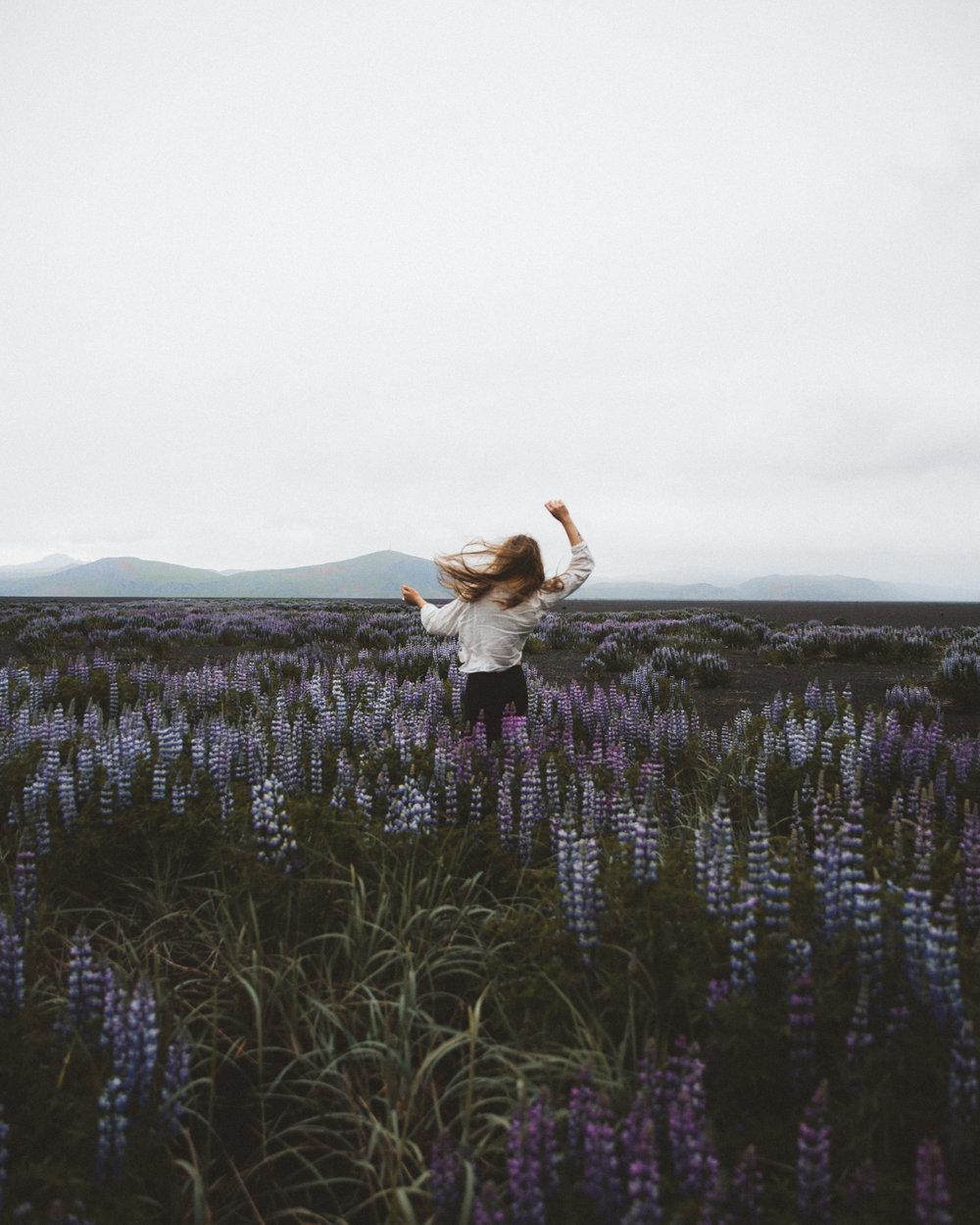 Iceland Day 10 - 30.jpg