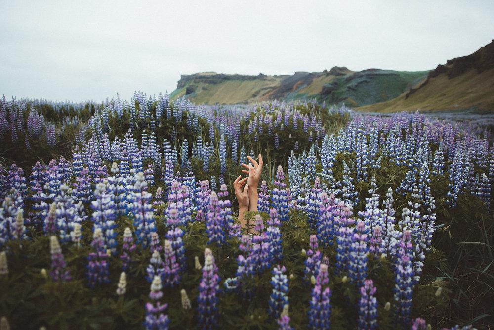 Iceland Day 10 - 36.jpg