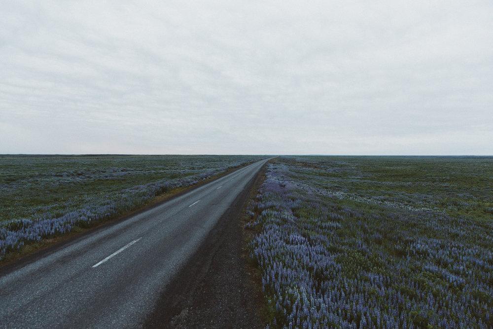 Iceland Day 10 - 59.jpg