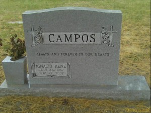 dad's grave