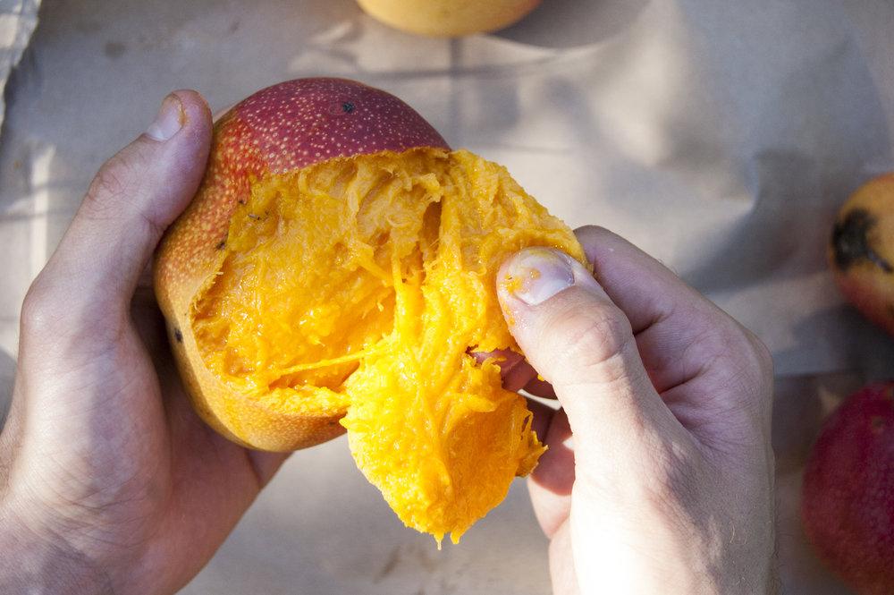 MangoHands