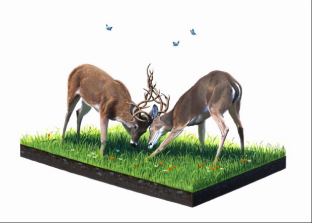 JOSH KEYES   |  Weaving