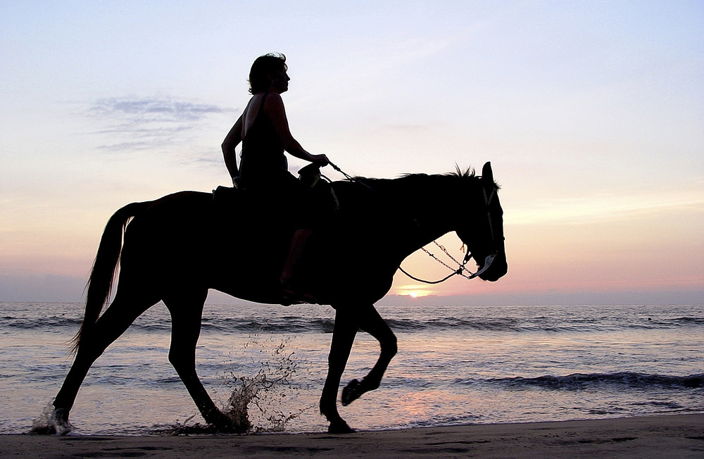 ENTER FOR INFO ON HORSEBACK RIDING