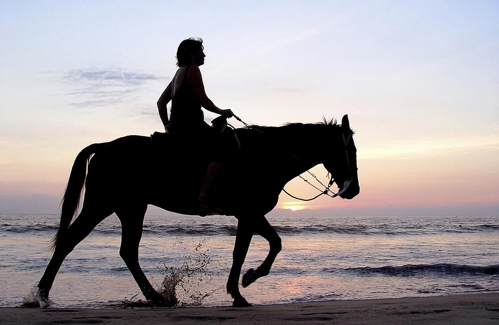 ENTER FOR INFO ON HORSEBACK RIDING