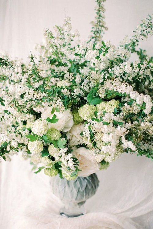 Top 10 Filler Flowers to Know. — Ebb & Flow Flowers