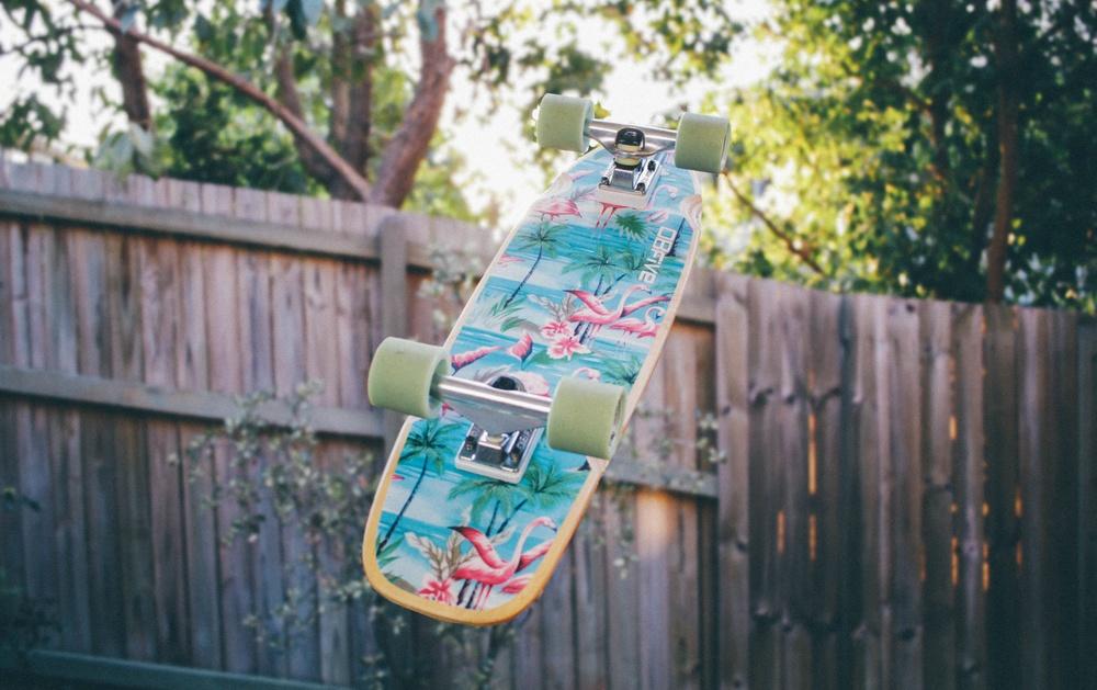 erica-sheldon-skateboard-toss.jpg