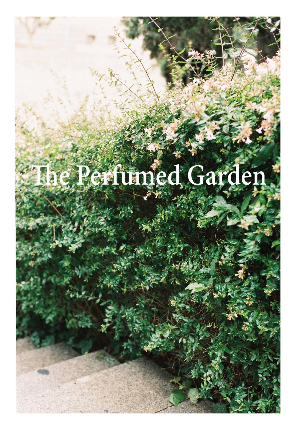 the-perfumed-garden-by-stephen-eichenbaum
