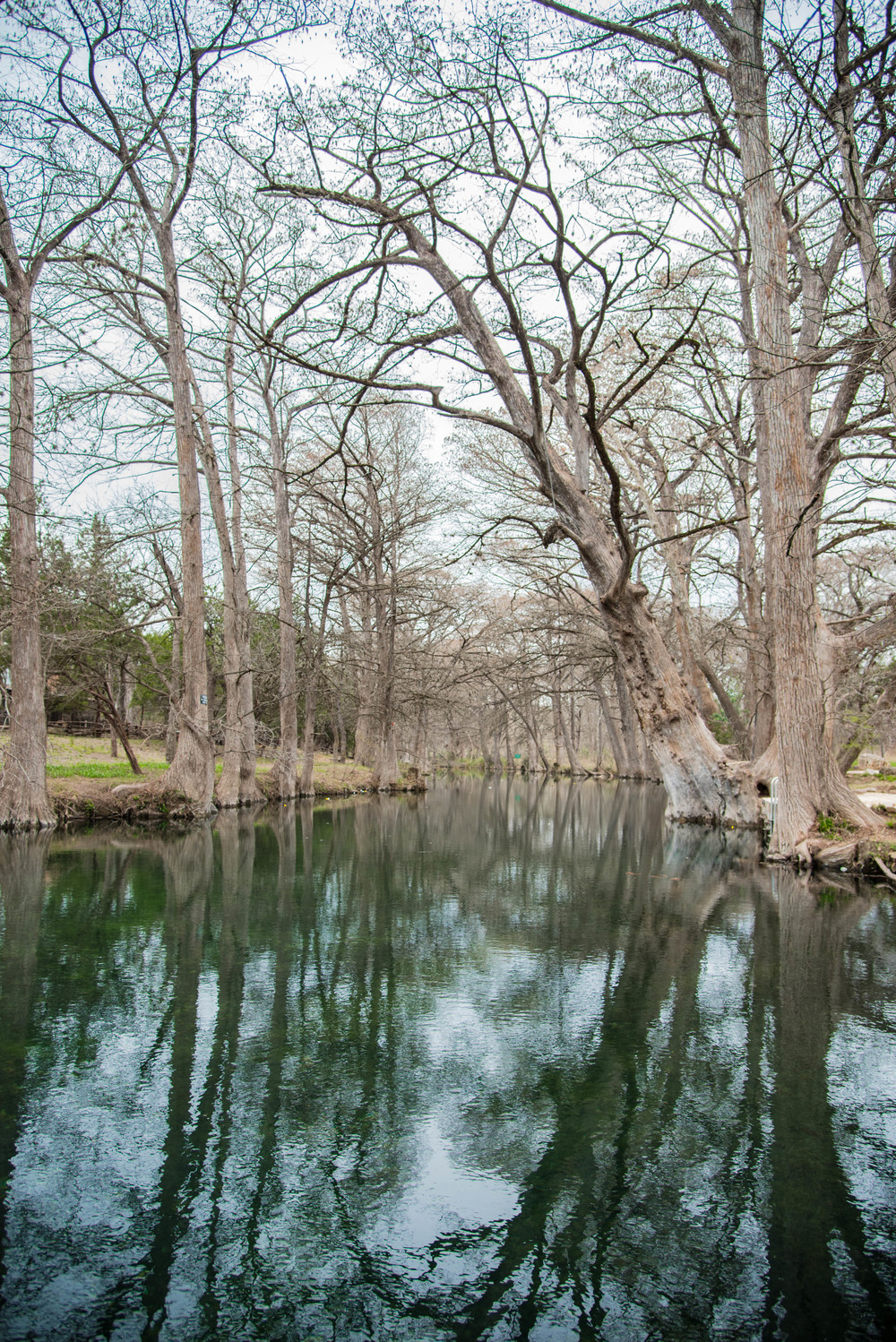 The Blue Hole  Wimberely, TX