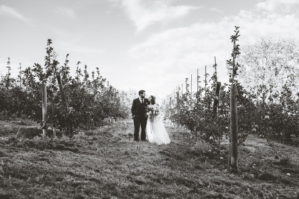 Sam&JoeBadSeedCiderWeddingHudsonValleyWedding (60).jpg