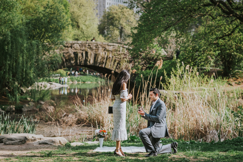 Vik Krishma Texas Couple New York City Central Park Proposal Engagement (2).jpg