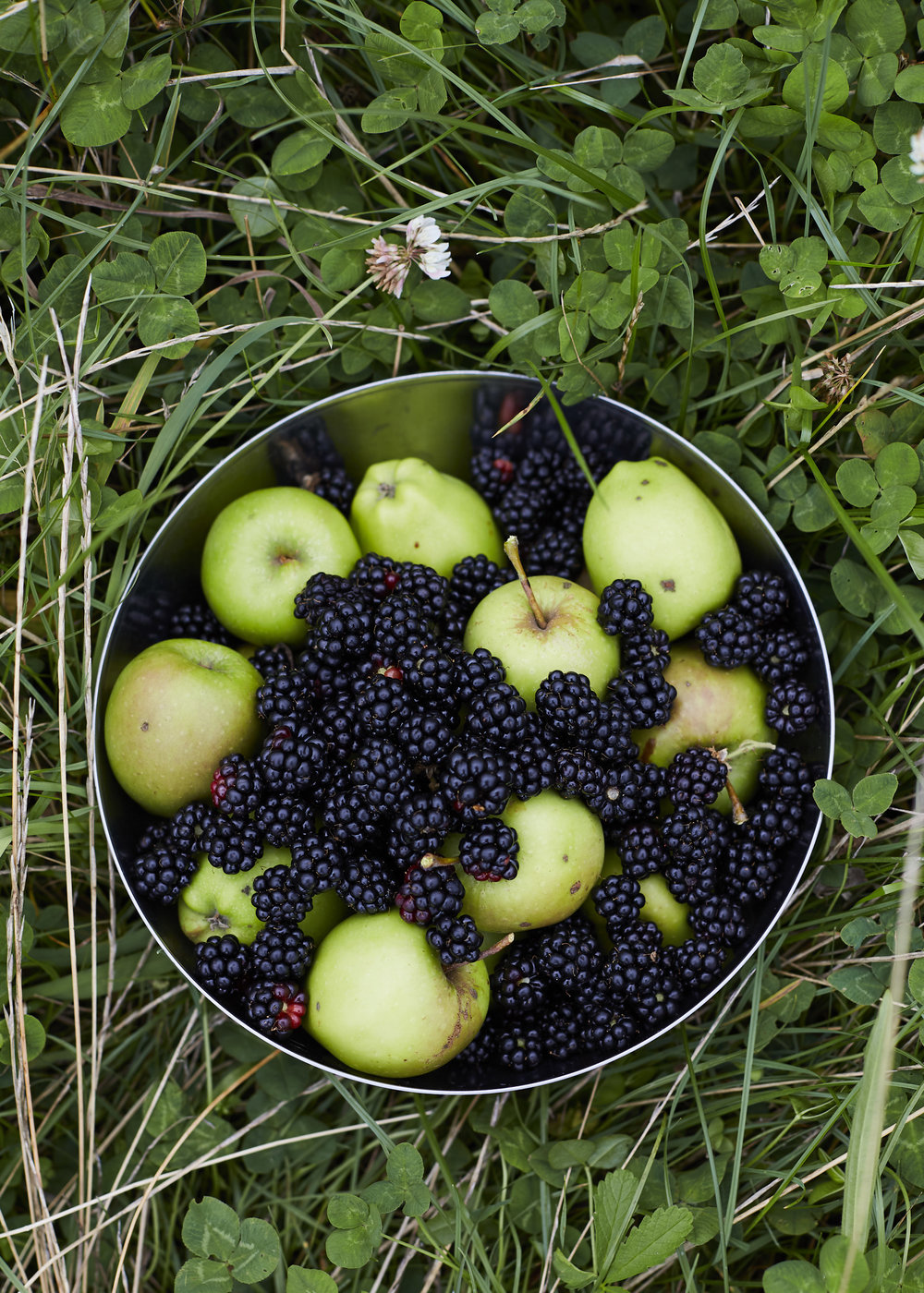 Apples & Blackberries
