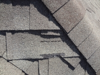 Damaged shingles newer roof