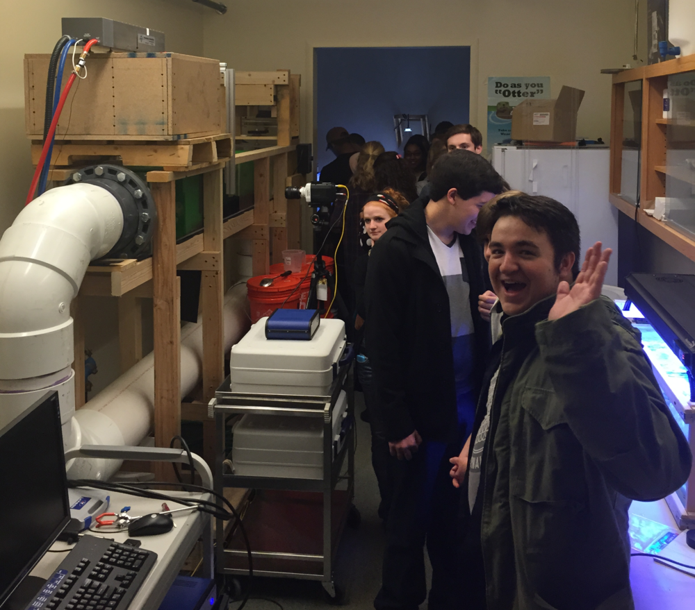 Though slightly crammed in, our visiting students had a good time checking out the marine life in ATRC 147 lab & getting to see the particle image velocimetry setup!
