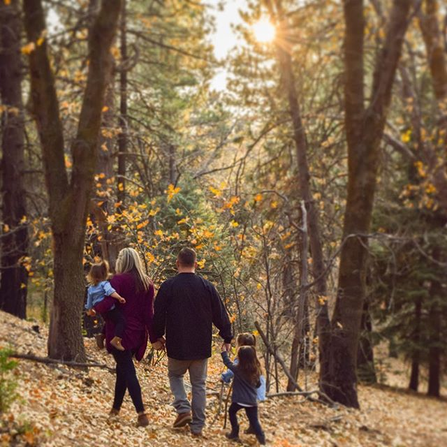 Fall family photography! 💕✨ . . . . . #familyphotography #family #fall #forest #photoshoot #photography #photographer #photooftheday #christmascard