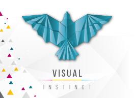 visual-instinct.jpg