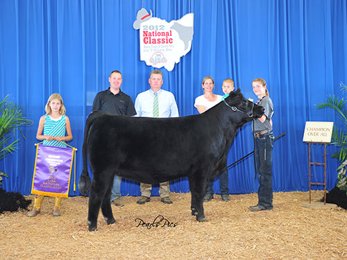 TJ Miss Rachel 138Y Champion Owned   Percentage Simmental Heifer   2012 AJSA National Classic