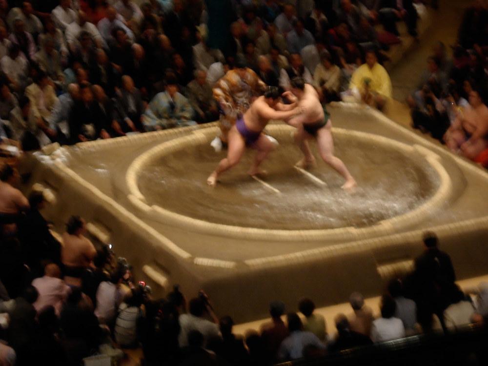 2007_Sumo_photo1.jpg