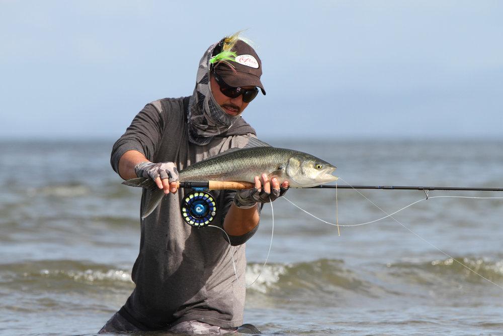 Ocean Hunter