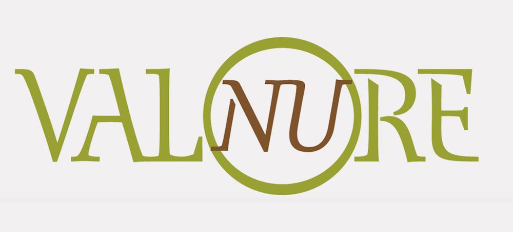 Logo ValoreValnure.png