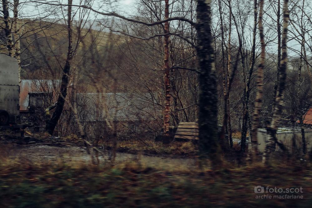 Road Home-23.jpg