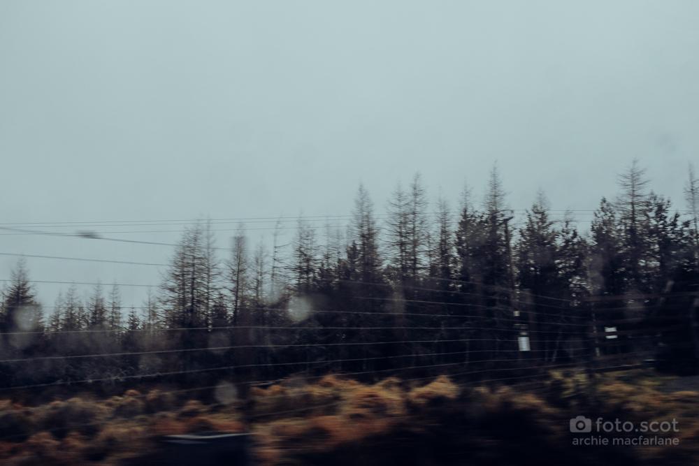 Road Home-8.jpg