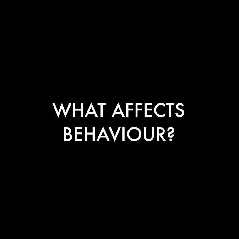What affects behaviour?