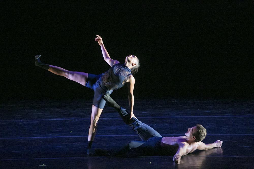 Robert Mark Dance