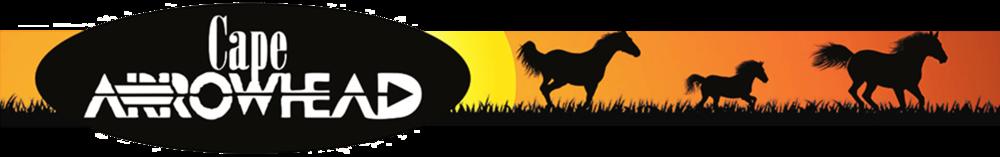 Cape Arrowhead Banner Logo.png